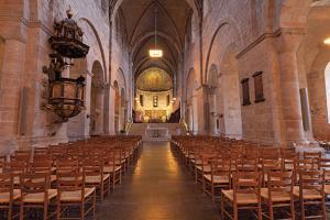 Renkus Cathedral Iconyx