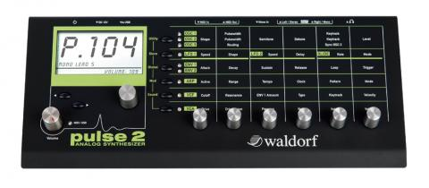 Waldorf Pulse